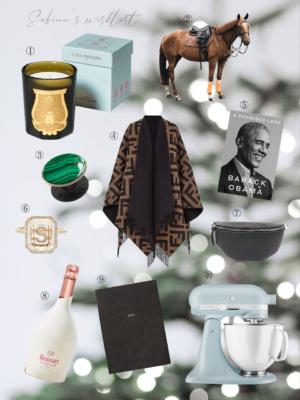 accessfashion Christmas Wish List